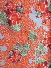 LISAN_LY  Floral closeup